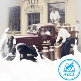 Заквасочные культуры ALCE, Италия