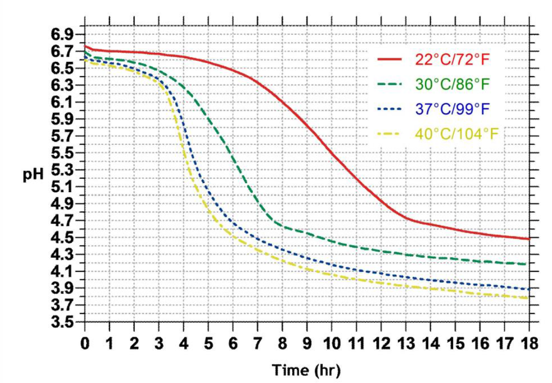 Мезо-термофильная закваска DCC-260, 350 единиц