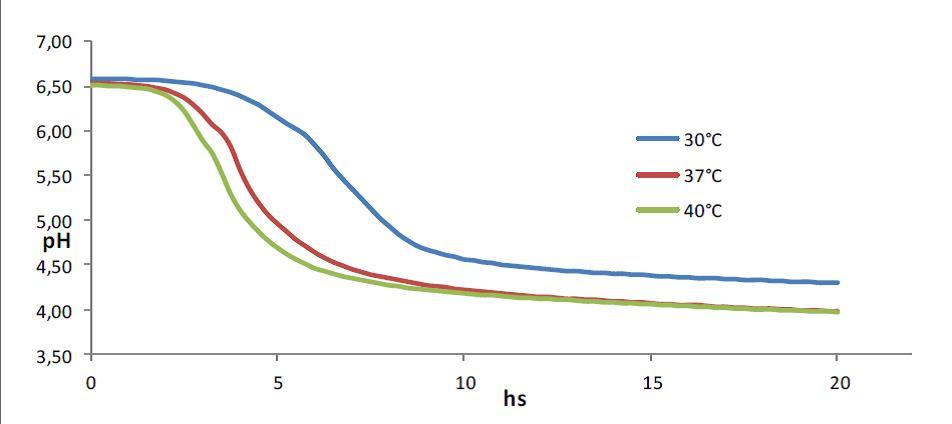 Заквасочная культура LYOBAC-D DHC 10/11, 1U (на 100л молока)