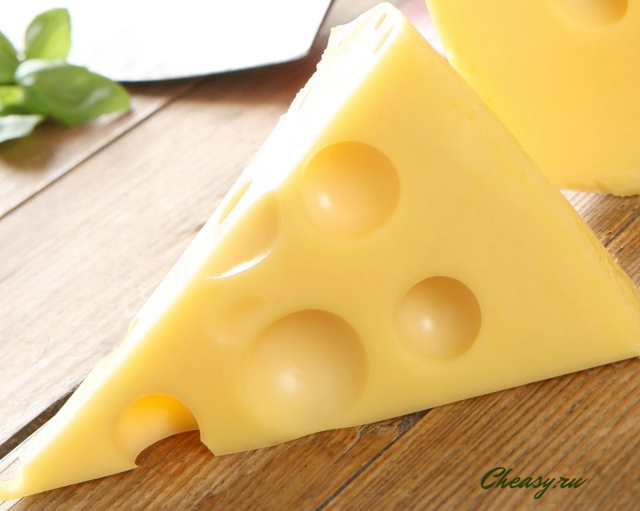 сыр Маасдам домашнего приготовления